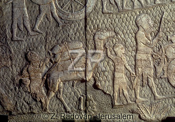 697-5 Lachish Captives
