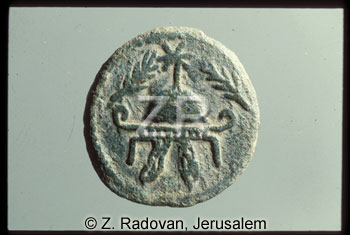 753-2 Herod the Great coins