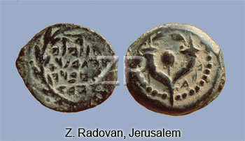 791-2 Hyrcanus coins