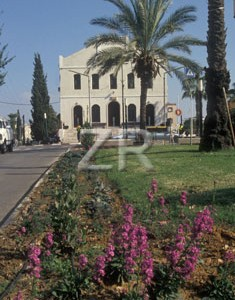 835-2 Rishon synagogue