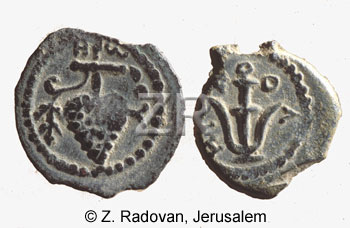 1414-2 Herod Archelaus coin