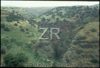 1955-1 Golan