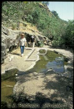 1959-5 Golan