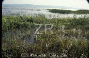 2246-10 Sea of Galilee