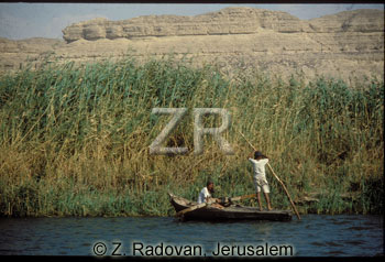 2383-2 Papyrus on the Nile