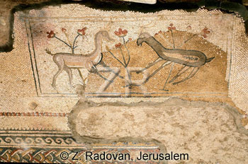 2705-5 Naaran synagogue