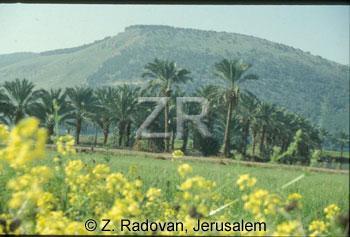 277-5 Mt.-Gilboa