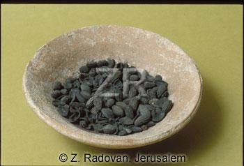 2898 Olives