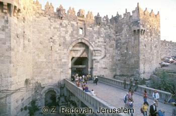 325-8 The Damask gate