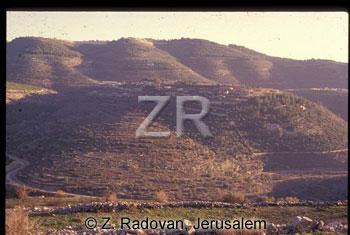 3336-6 Judean hills