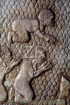3506 Lachish prisoners