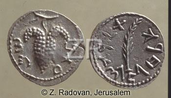 3606 BarCohbah coins