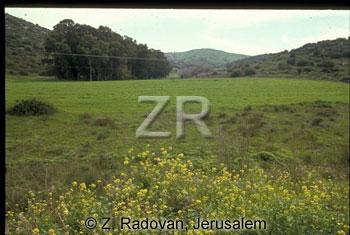 3670-6 Judean hills
