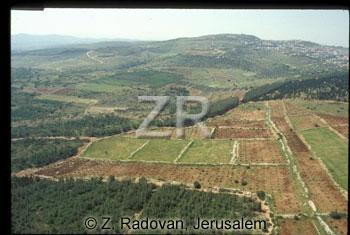 442-11 Vlley of Jezreel