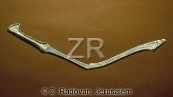 543-3 Cnaanite sword