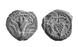 1414-5-Herod Archelaus coins