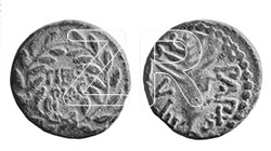 6447-1-Herod Antipas coin
